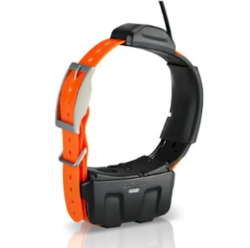 Cat Tracking Collar Iphone furthermore Garmin Astro 320 Dog Tracking GPS Unit Only P2852 furthermore Hunting News in addition Z2FybWluIGdwcyB0cmFja2Vy together with Product Review Tri Tronics Sport Upland G3 Exp With Beeper. on gps tracking collars dogs